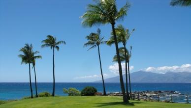 Copertina Hawaii