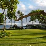 Hawaii - Moui