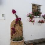20150511 - 017 - Castillo de Castellar